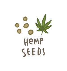 hemp seeds superfood vector image