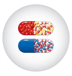 Medicine capsules vector