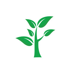 tree green leaves and ecology logo vector image