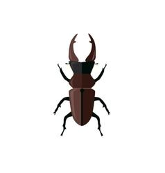 Big beetle deer with horns vector