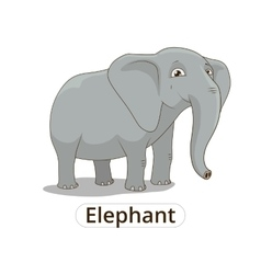 Elephant african savannah cartoon vector