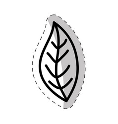 Leaf plant flora cut line vector