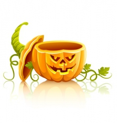 Halloween pumpkin vector image