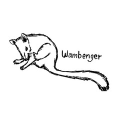 Wambenger - sketch hand drawn vector