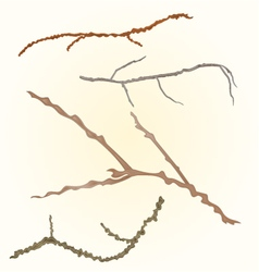 Sprigs- twig tree various branch vector