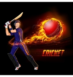 Batsman playing cricket championship vector