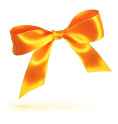 Orange isolated bow on white background vector image