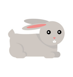 rabbit cartoon isolated on white vector image vector image