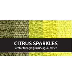 triangle pattern set citrus sparkles seamless vector image vector image
