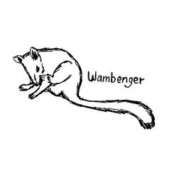 Wambenger - sketch hand drawn vector