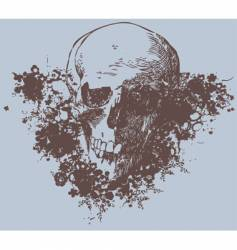 grunge skull vector image vector image