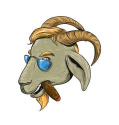 Hip goat smoking cigar drawing vector