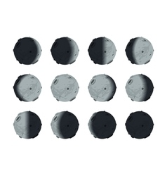 The whole cycle of moon phases from new to full on vector