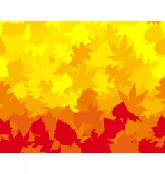 Vibrantly colored fall leaves vector