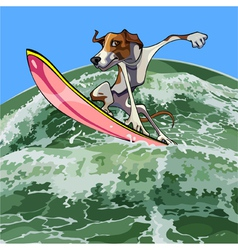 Cartoon dog surfer on a wave vector