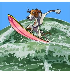 cartoon dog surfer on a wave vector image