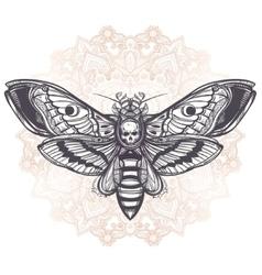 Deaths head hawk moth with mandala vector