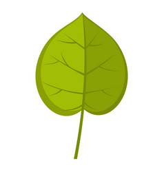 Green linden leaf icon isolated vector