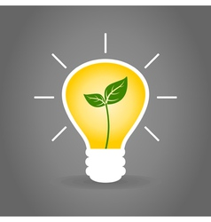 Plant a bulb vector image vector image