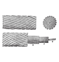 The original atlantic cable vintage vector
