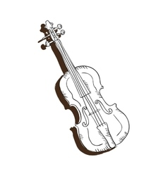 Violin musical instrument vector
