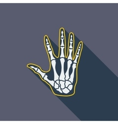 Anatomy hand vector