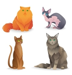 Cat breeds set vector