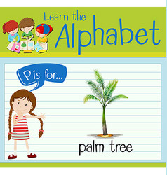 Flashcard letter p is for palm tree vector
