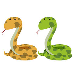 Two rattlesnakes on white background vector