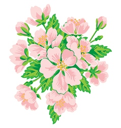 Bouquet of pink flowers isolated on white vector