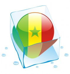 Senegal flag vector