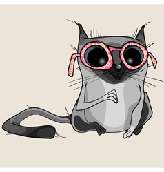 Cartoon funny gray cat in pink glasses vector