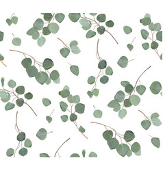Eucalyptus tree branches leaves seamless pattern vector