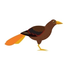 Brown bird icon vector