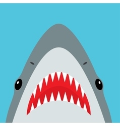 Shark with open mouth and sharp teeth vector image