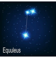 The constellation Equuleus star in the night sky vector image