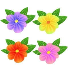 Spring Fresh Colorful Flowers vector image