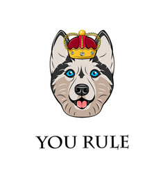 husky in crown vector image vector image