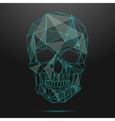Low poly skull Thin line skull vector image vector image