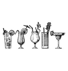 set of alcohol cocktail vector image vector image