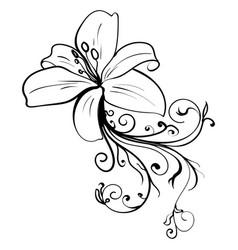 grunge elegance ink tattoo sketch flower vector image vector image