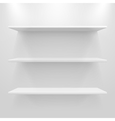Empty white shelves vector image