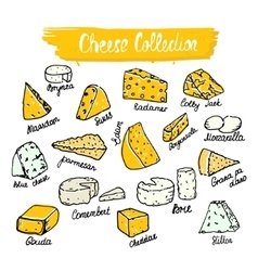 Cheese collection of cheese vector image vector image