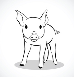 pig 2 vector image vector image