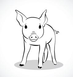 Pig 2 vector