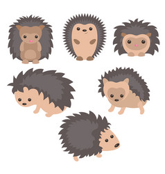 set of cute hedgehogs set of cute hedgehogs vector image