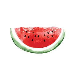 Watercolor watermelon vector