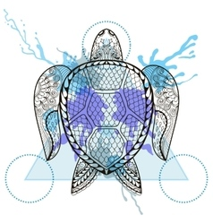 Zentangle stylized turtle in triangle frame with vector