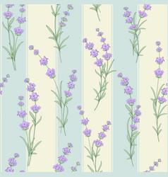 seamless pattern of lavender flower vector image vector image