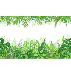 Tropical plants horizontal border vector